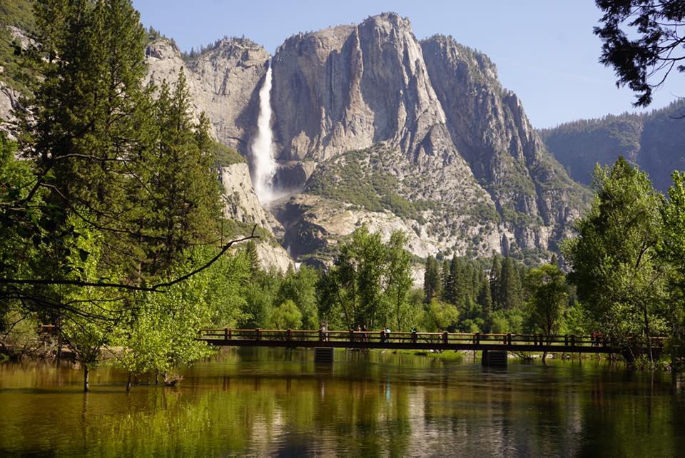 Experience Yosemite National Park