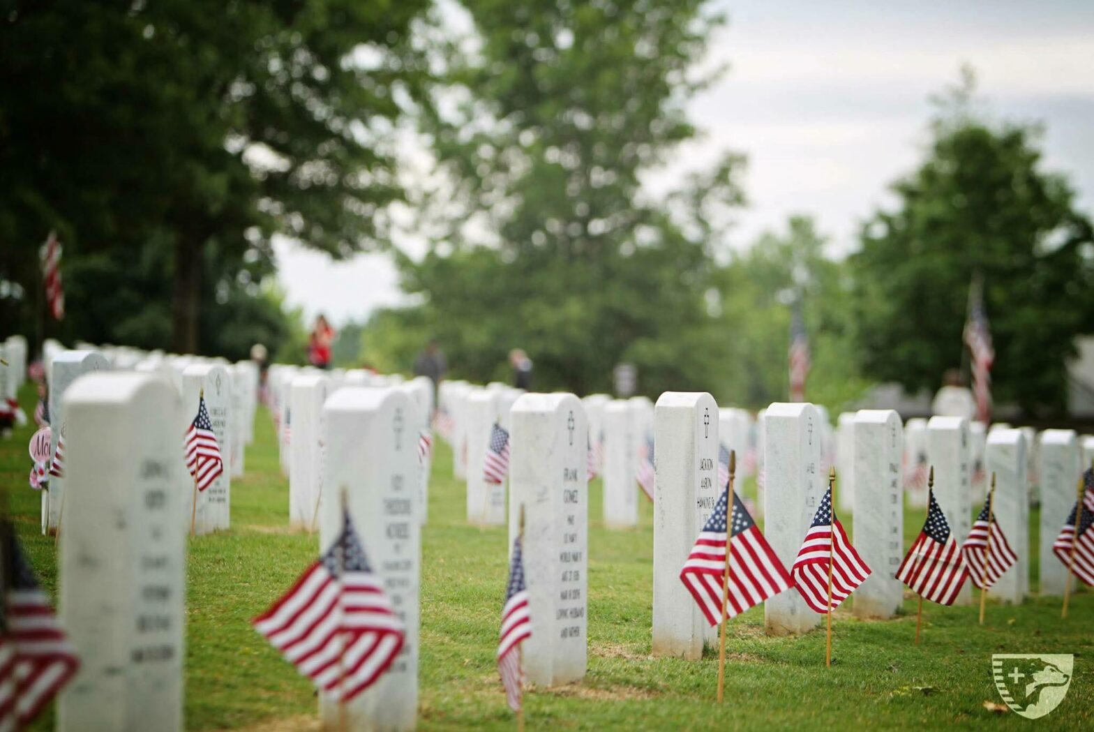 SDIA Honors Our Fallen Heroes Through Memorial Day Events